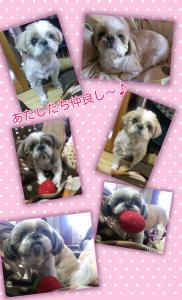 blog_import_539b8bb81842c